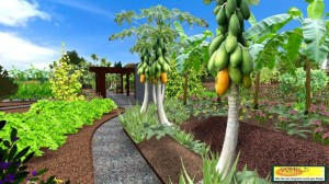 3D community garden - banana circle