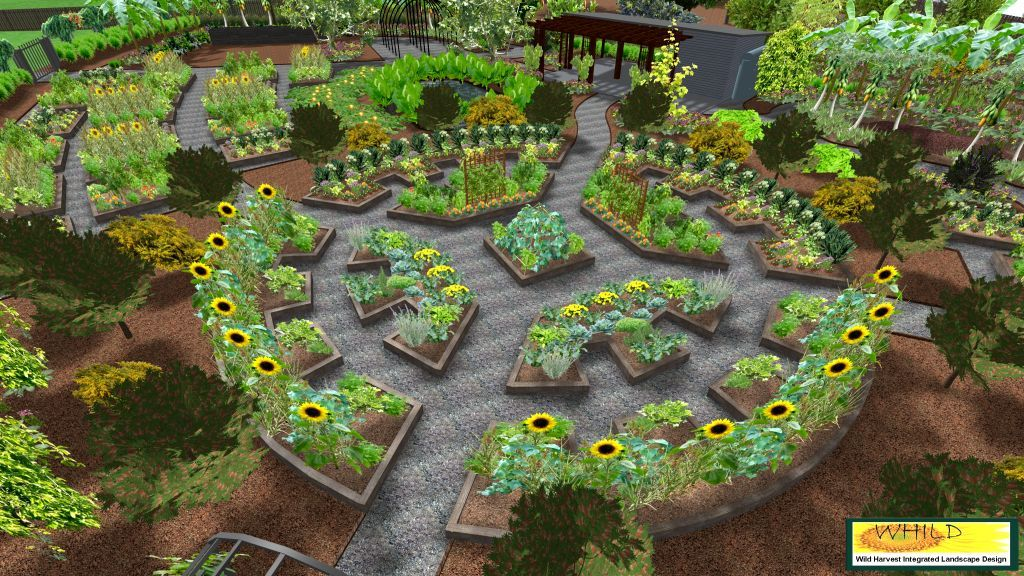Take a 3D tour of our proposed community garden in Coffs Harbour