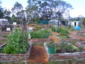 Private garden plots