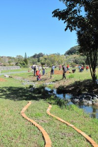 Coffs Harbour Community Garden Workshop