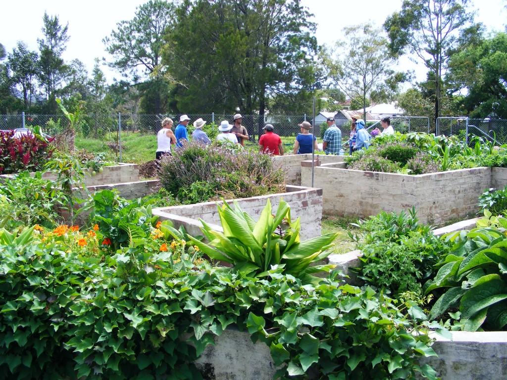 A view into the Mandala garden - November 2012