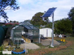 Front of Aquaponics system hot house showing solar pannels