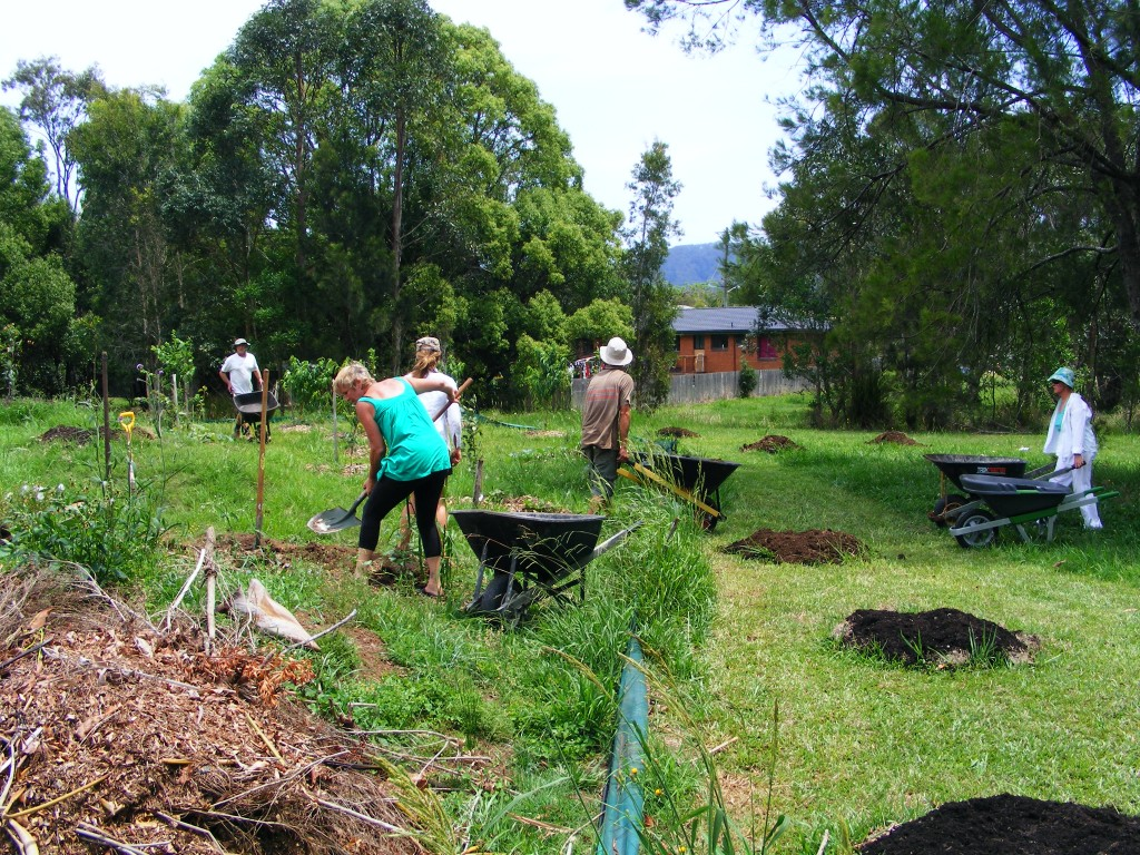 Planting out more trees in the Warm-temperate food forest - November 2012