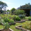 Coffs Regional Community Gardens 2015